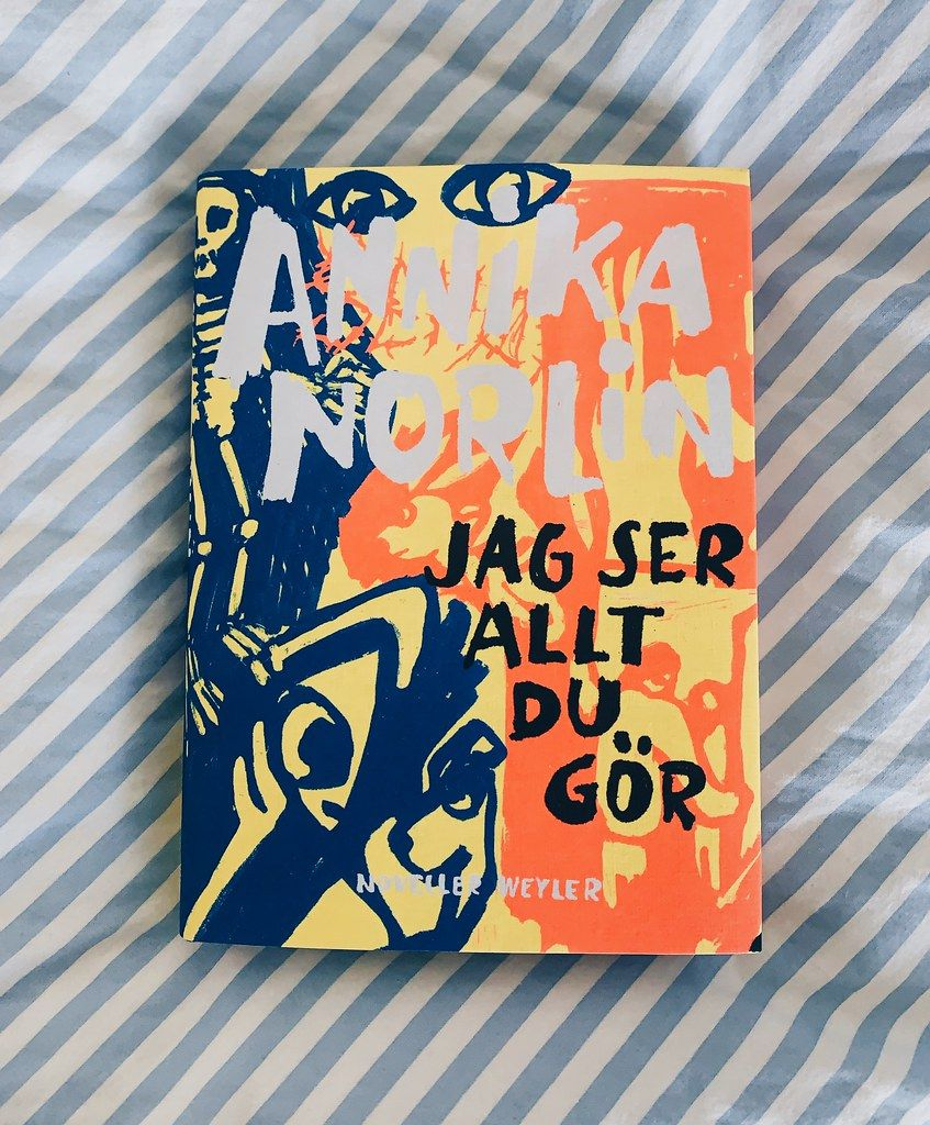 Jag Ser Allt Du Gor Annika Norlin Book Cover Art Photo