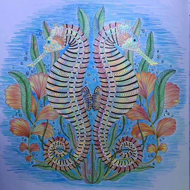 """THE SEAHORSES, from """"Tropical World Coloring Book"""" #seahorse #tropicalworld…"""