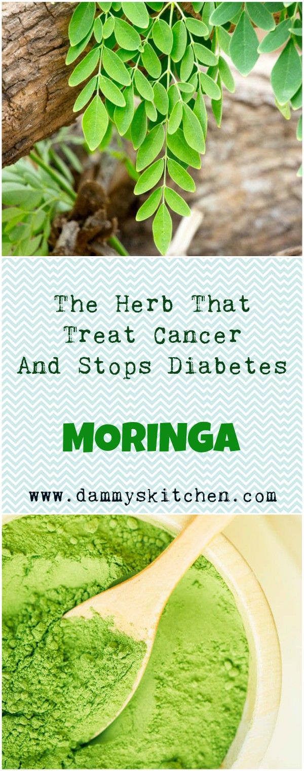 The Herb That Treat Cancer And Stops Diabetes - Moringa