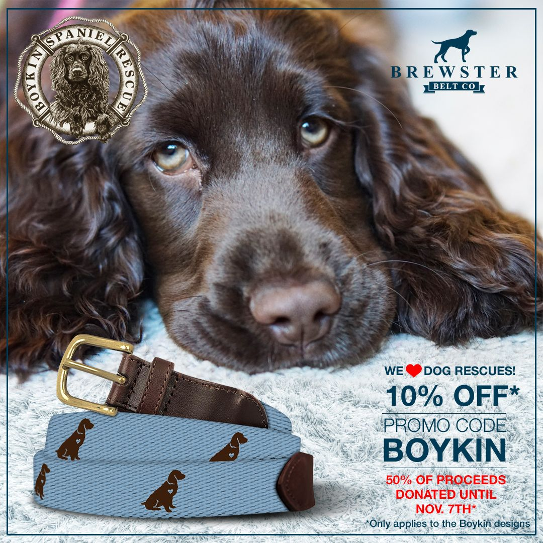 Brewster Is Teaming Up With The Boykinspanielrescue To Help Raise