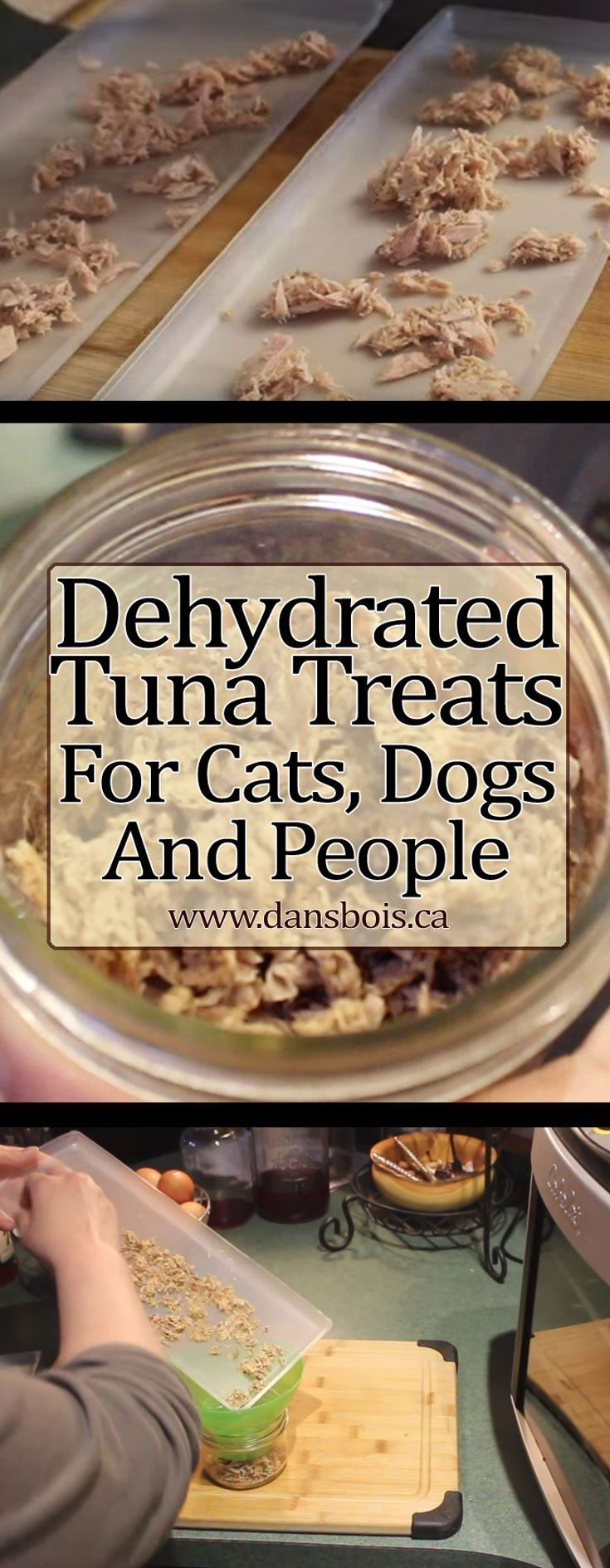 Dehydrated tuna pet treats for cats dogs people dog