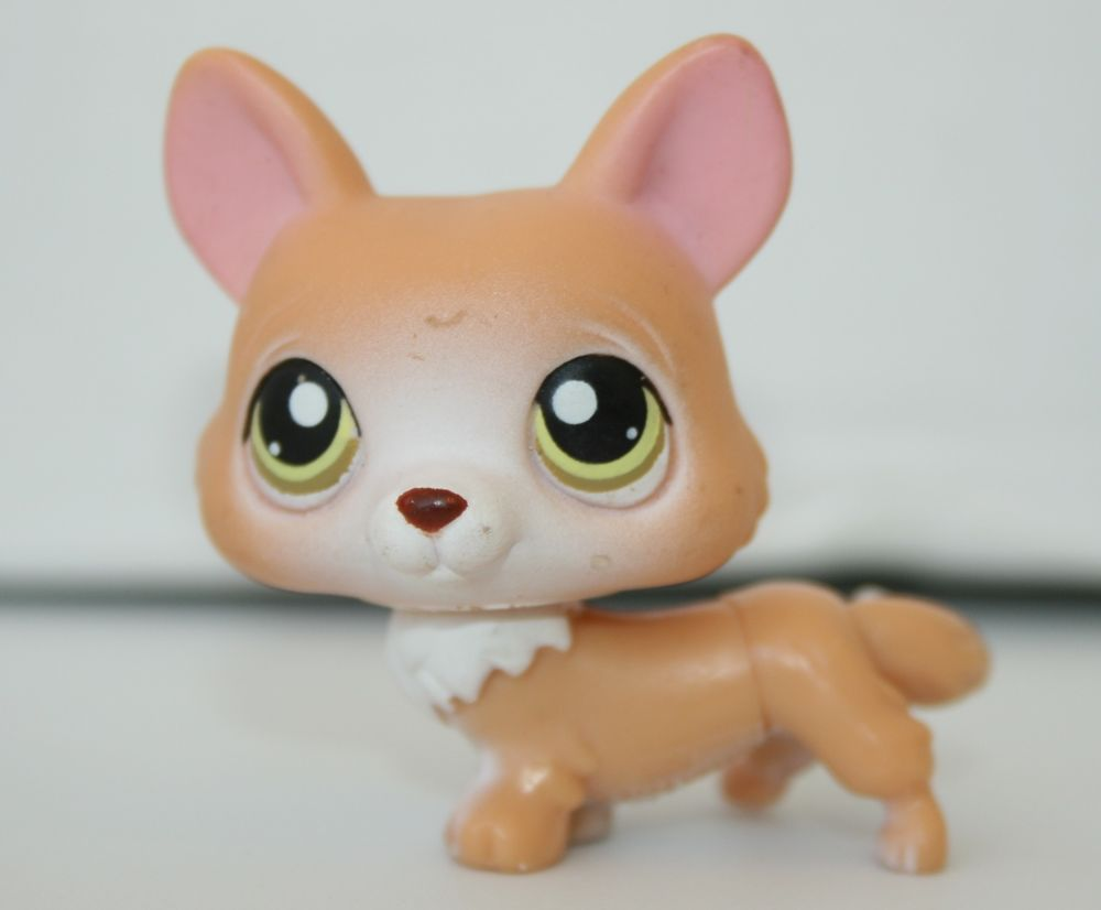 LPS Littlest Pet Shop #183 CORGI Puppy Dog Tan & White # ...