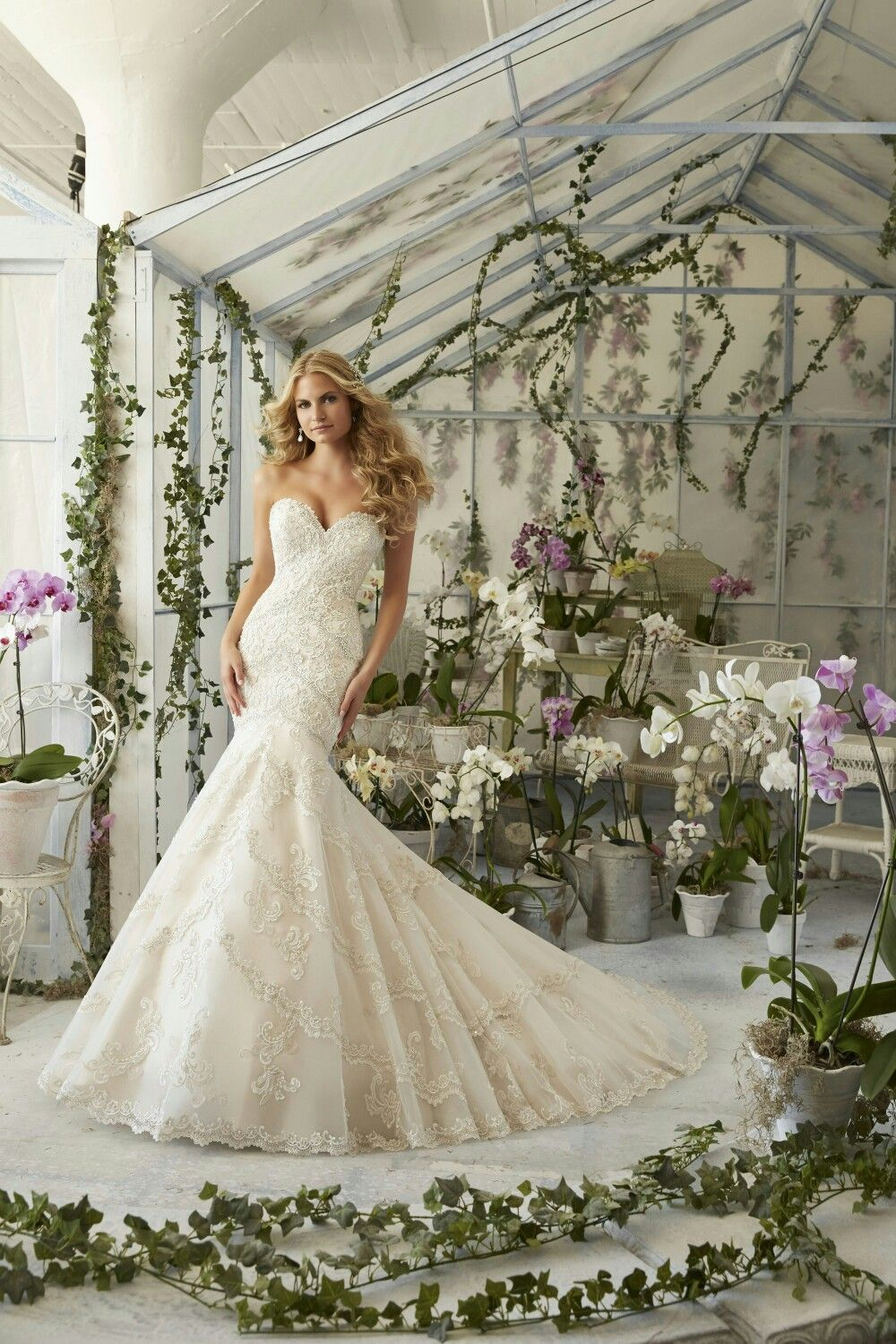 Mermaid style dressve the beadworks wedding ideas mori lee bridal 2801 morilee bridal by madeline gardner mockingbird bridall dallas tx bridal gowns bridesmaids wedding dresses dallas texas ombrellifo Image collections