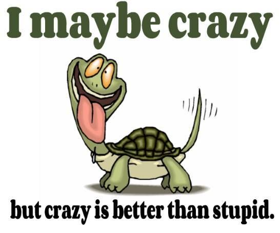 I May Be Crazy Funny People Quotes Funny Quotes About Life Sister Quotes Funny