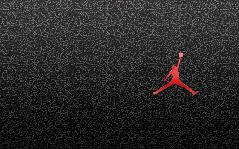 air jordan cheetah texture logo hd