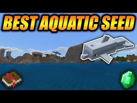 Best Minecraft Update Aquatic Seed Ever Minecraft Bedrock