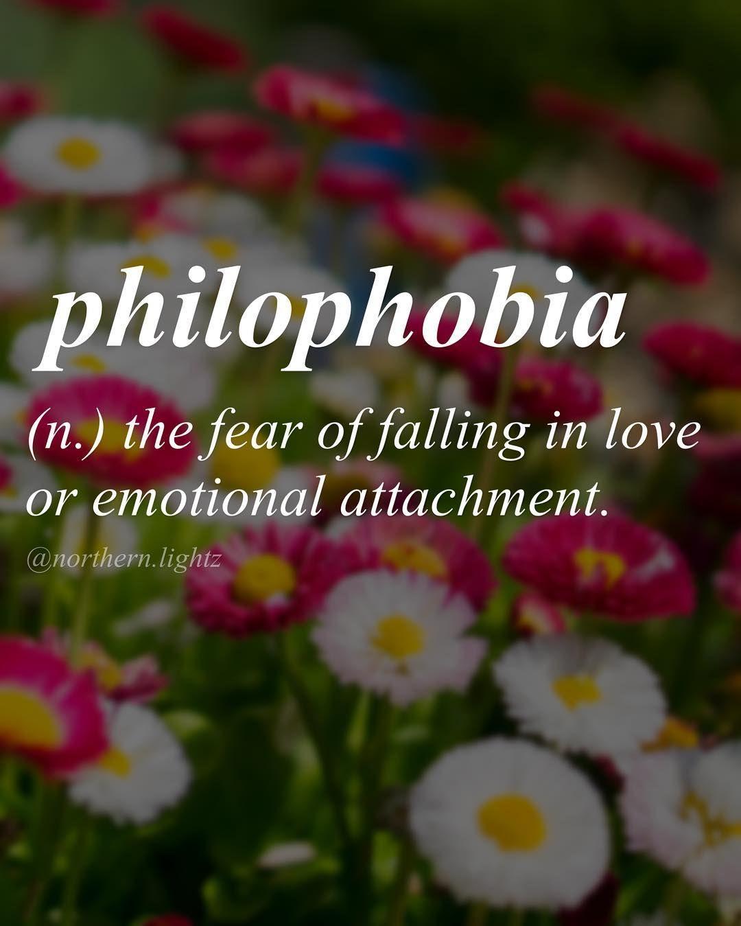 Latin Origin Philos Meaning Loving