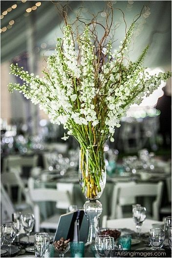 Tall white larkspur and curly willow centerpiece