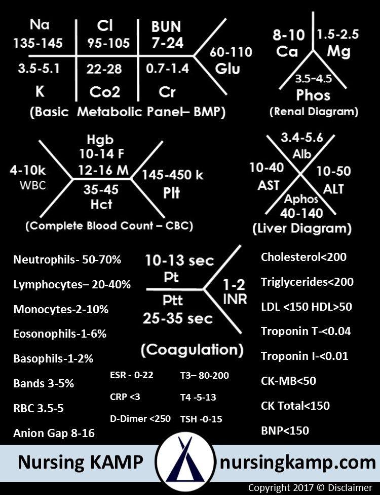 Fishbone Diagram Medical Labs : fishbone, diagram, medical, Nursing, Values, NCLEX, Fishbone, Nursingkamp.com, School, Survival,, Studying,, Notes