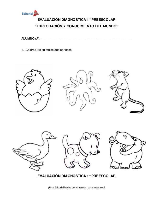 Ejemplo de evaluacion diagnostica editorial md | .Actividades Niños ...