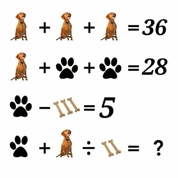 Картинки задачки и ответы