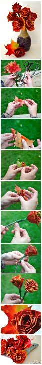 Cool roses made from fall leaves  http://www.joybx.com/entry/11154.html