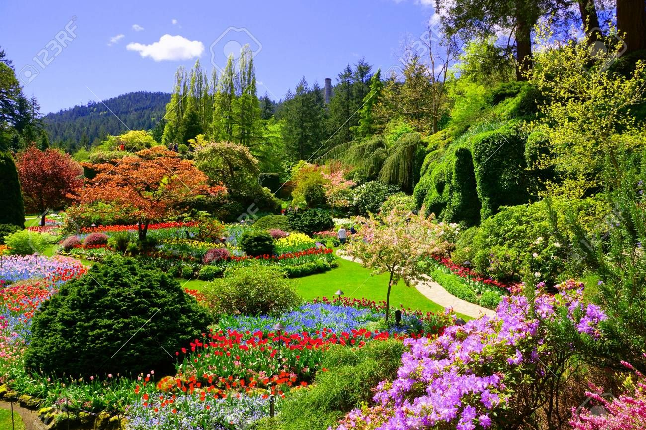 Butchart Gardens, Victoria, Canada. View of the colorful ...