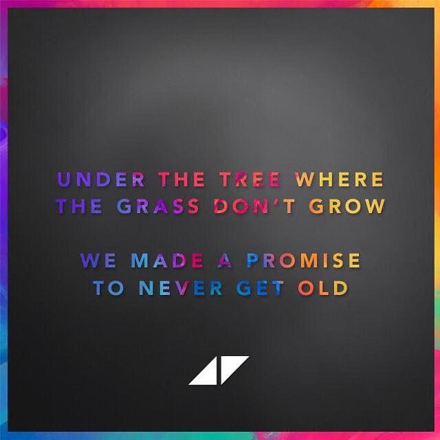 The Days Avicii Avicii Robbie Williams Lyrics Avicii Lyrics