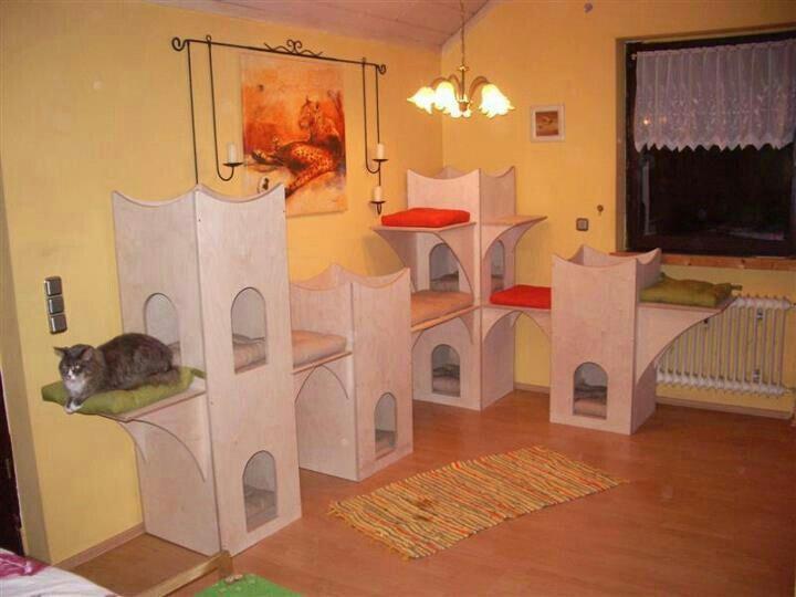castle furniture for cats cats furniture pinterest. Black Bedroom Furniture Sets. Home Design Ideas