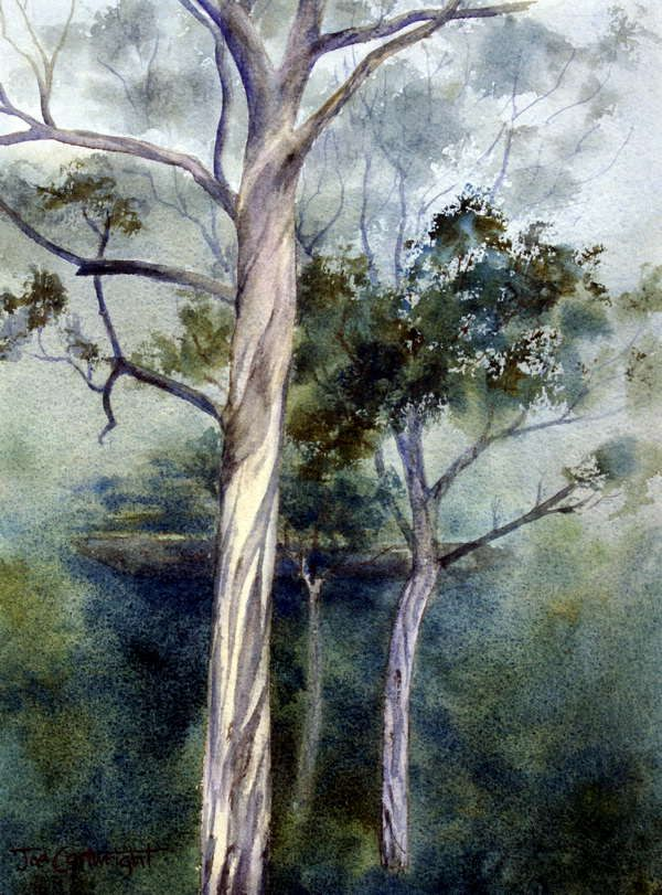 Grose Valley Gum Trees Watercolor Painting