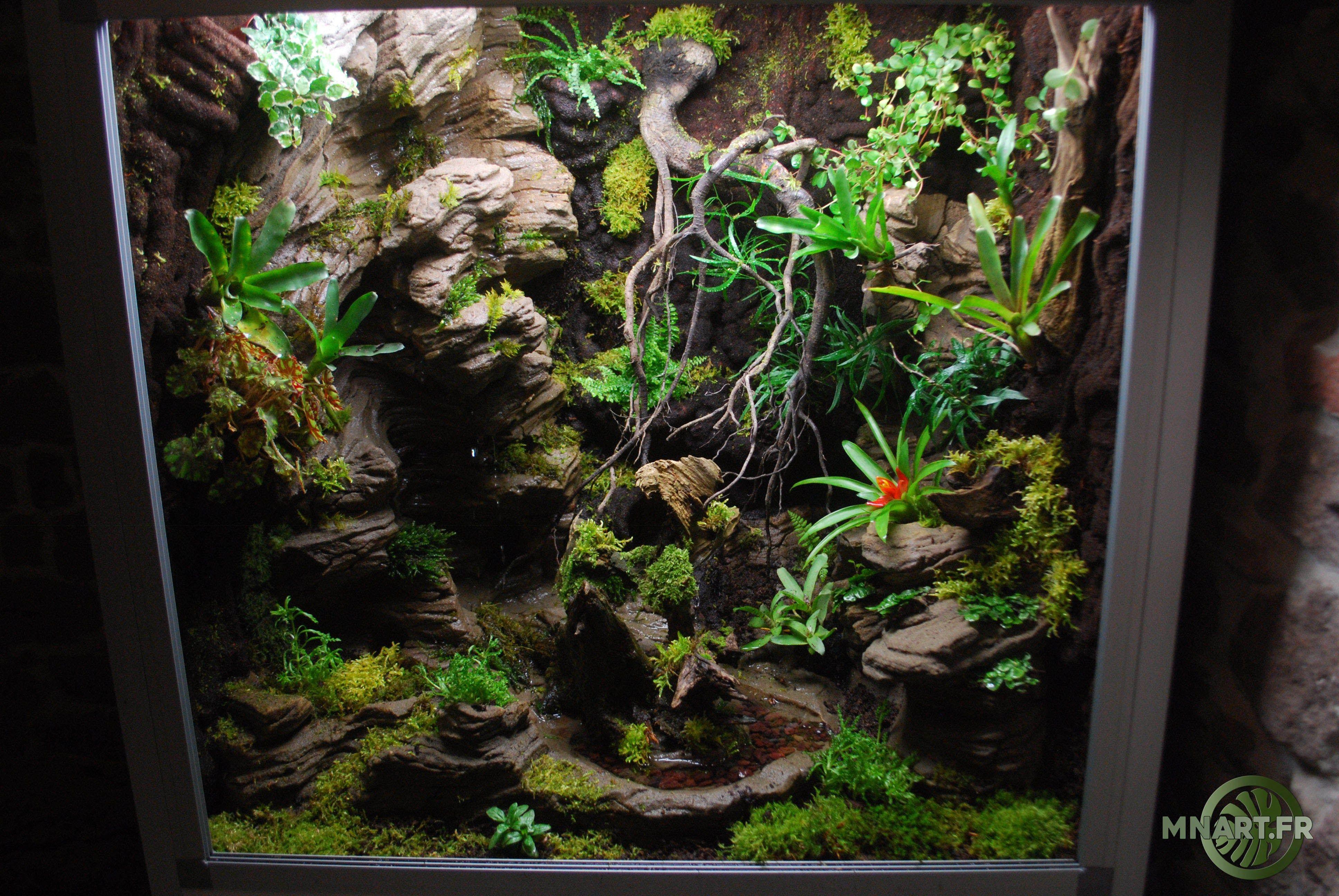 Mnart créateur fabricant de décor désertique tropicale terrarium