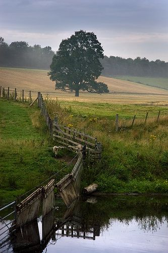 By The River ~ Askham, England