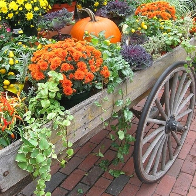 131 Best Vintage Wagons Images On Pinterest | Flowers, Gardens And ... |  Wagons / Wheel Barrows / | Pinterest | Wagon Wheels, Flowers Garden And  Barrow ...