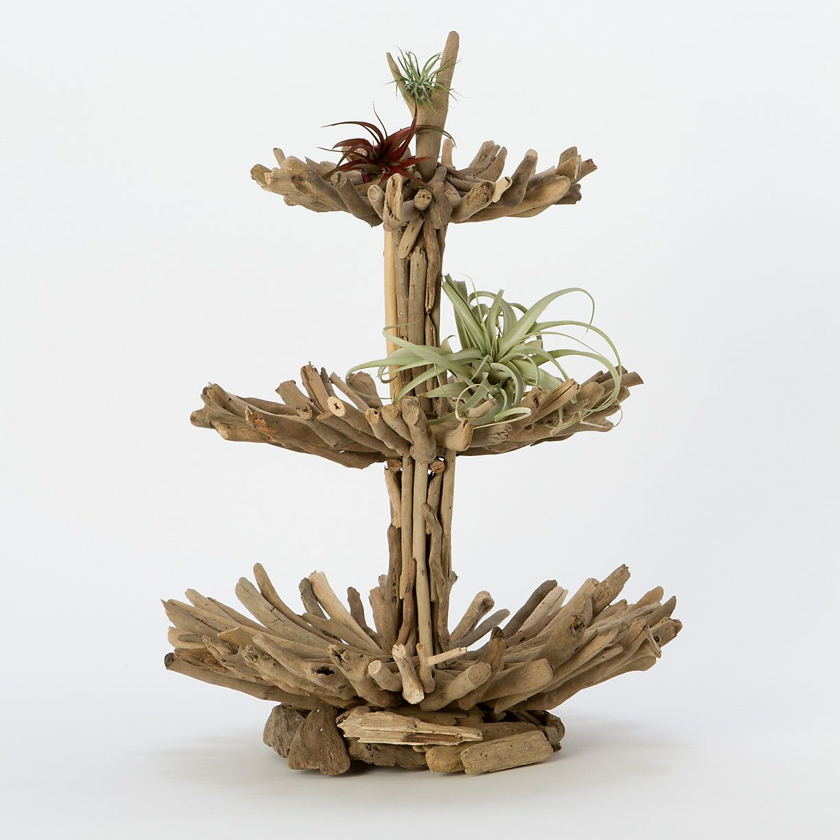Terrain Home Decor: Twisted Driftwood Epergne In House+Home HOME+DÉCOR Room
