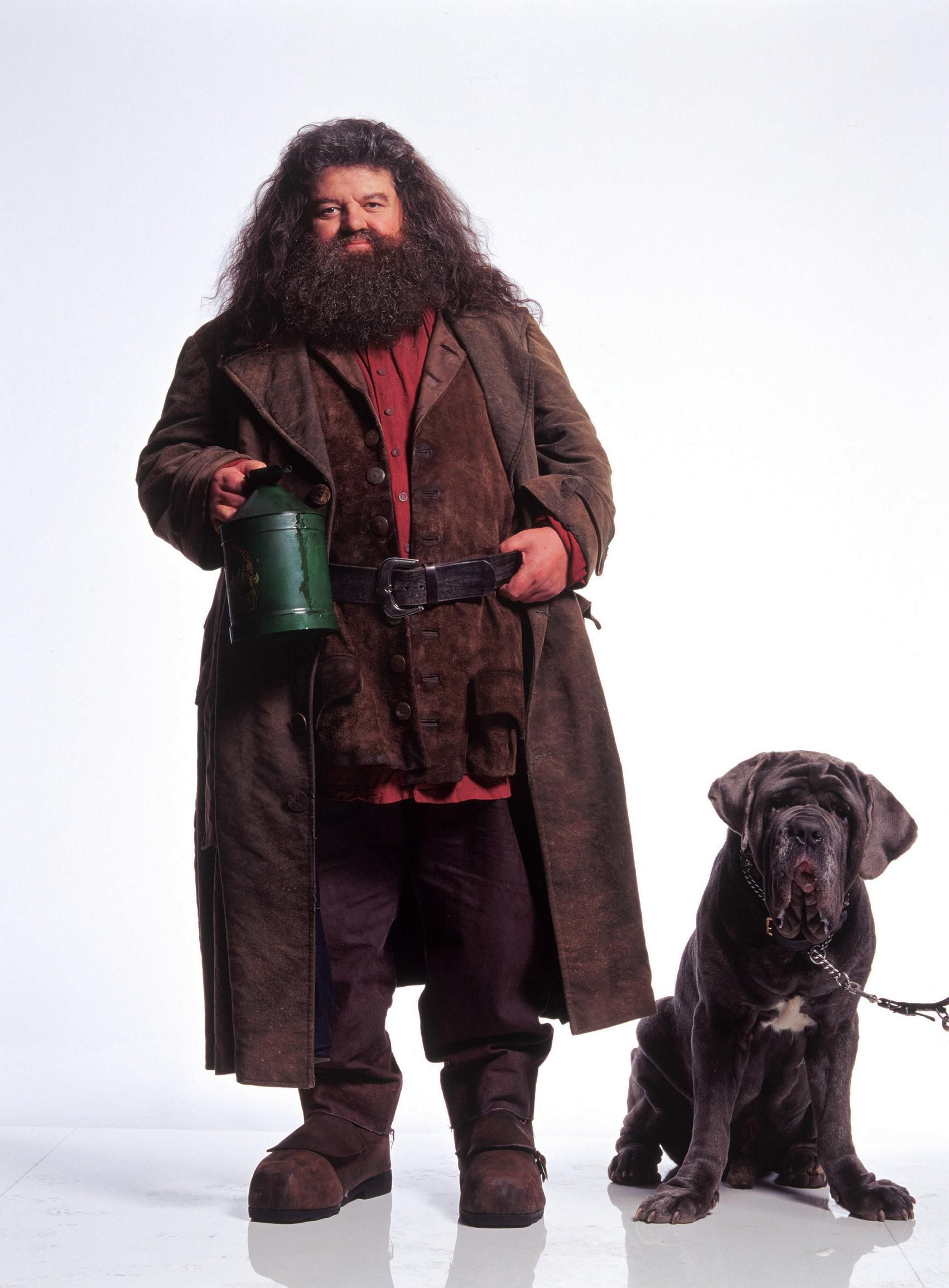 hagrid's fang Google Search Harry potter movies, Harry