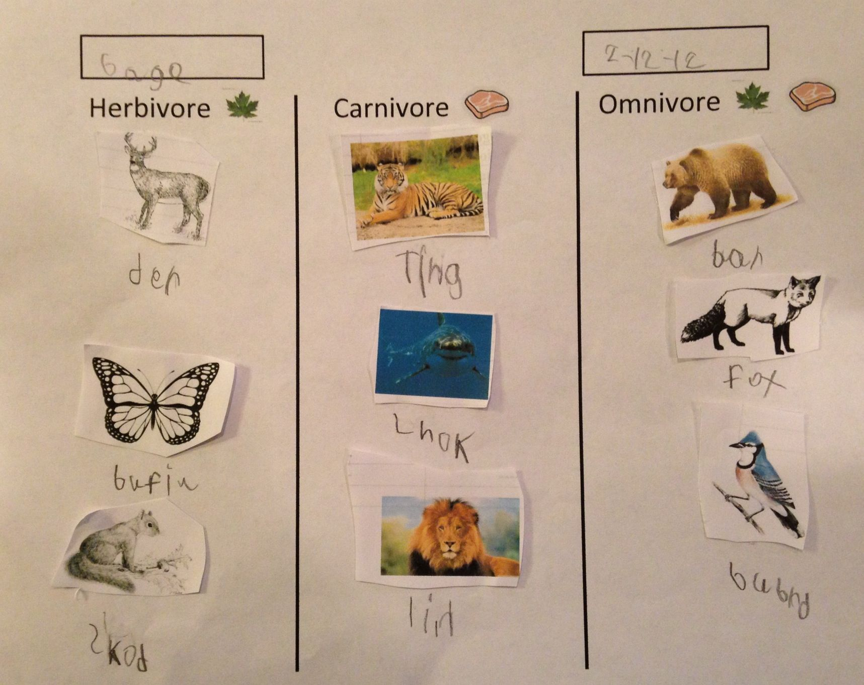 Animal Research In Elementary With Brainpopjr Great