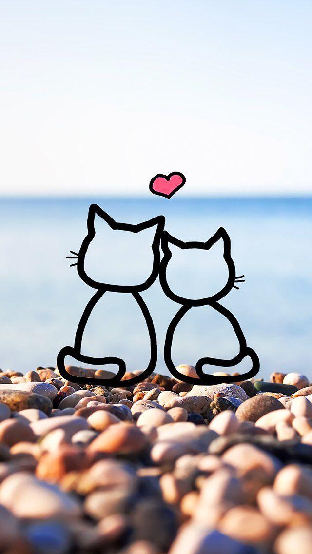 Fond D Ecran Trop Choupinou Cat Wallpaper Cartoon Wallpaper Cute Wallpapers