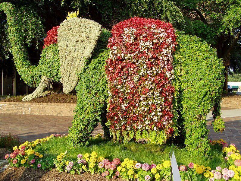 Beautiful Topiaries   Topiary, Gardens and Garden sculptures