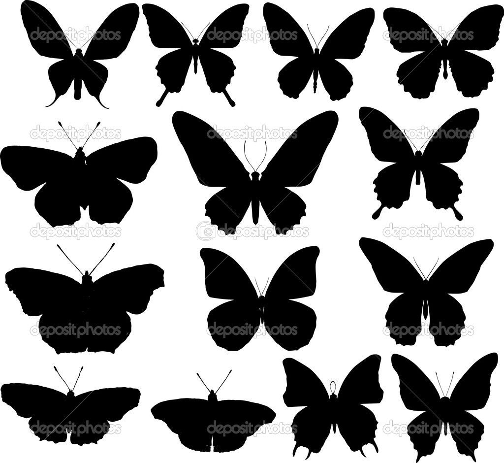 Stock Vector Dr Pas 6261329: Fourteen Butterfly Silhouettes