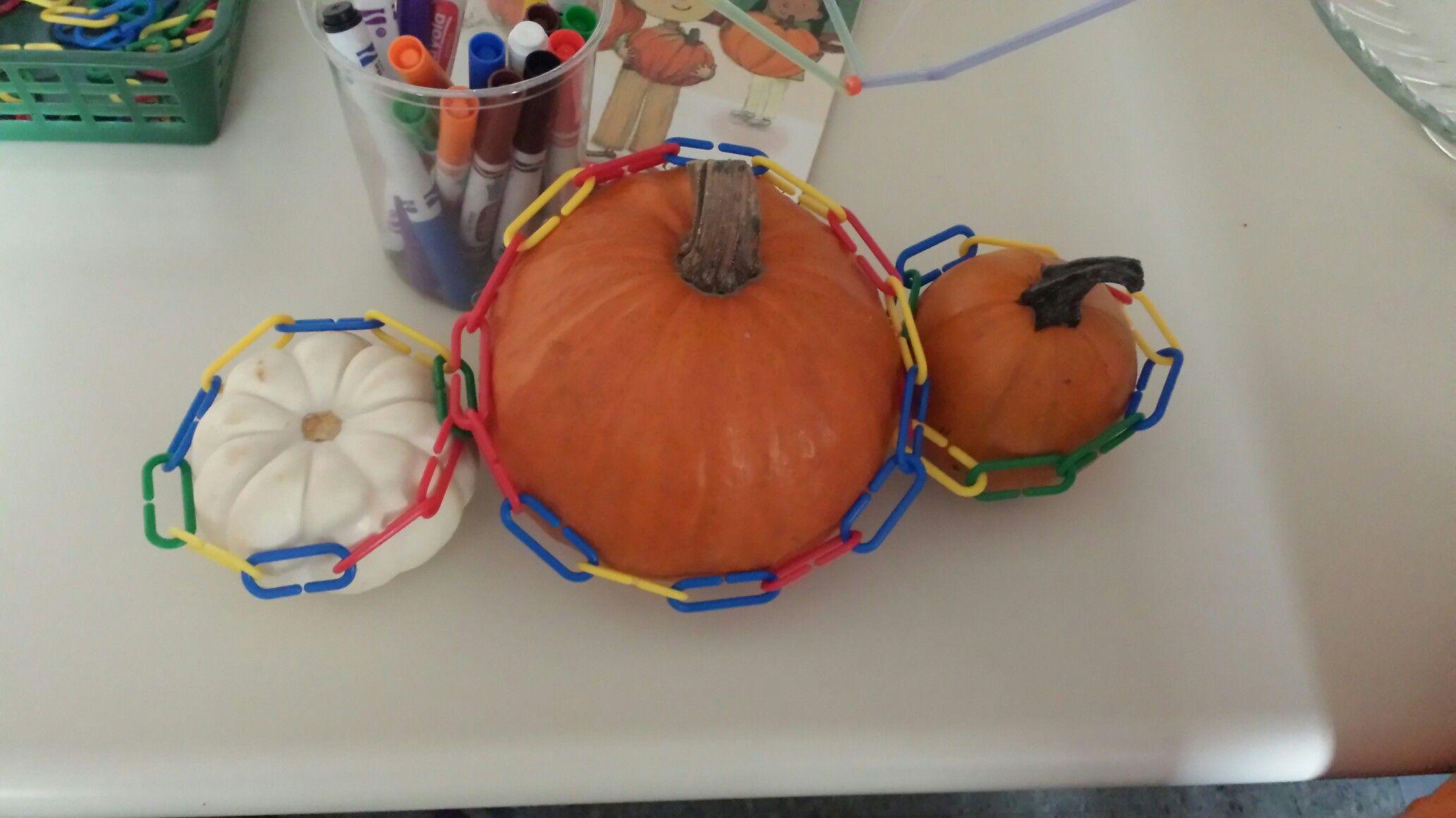 Measuring Pumpkins Provocation Ndergarten Math