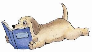 STORYWRAPS: Madeline Finn and the Library Dog - a bookwrap