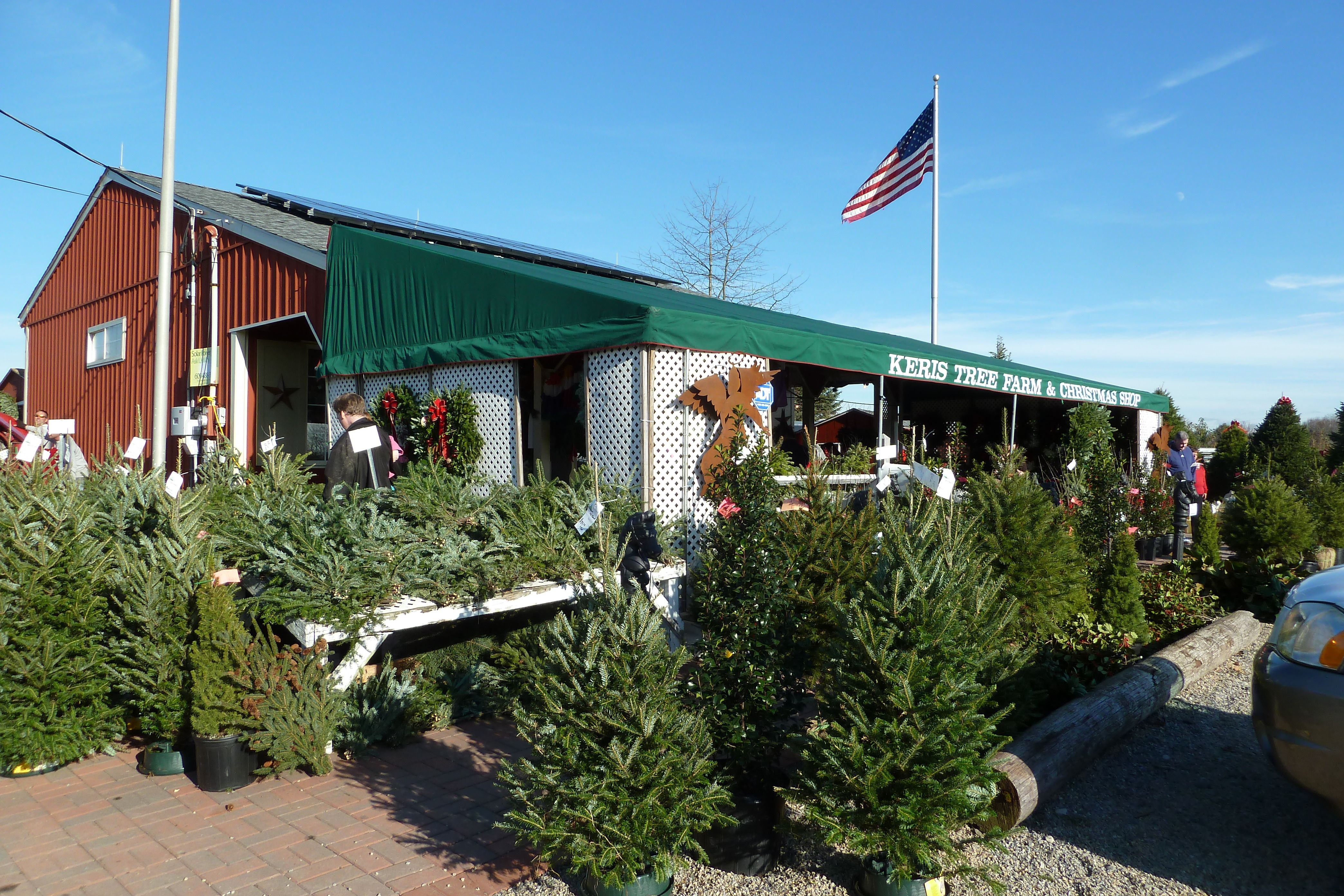 Keris Tree Farm Christmas Shop Allentown Nj Tree Farms Outdoor Decor Christmas Shopping
