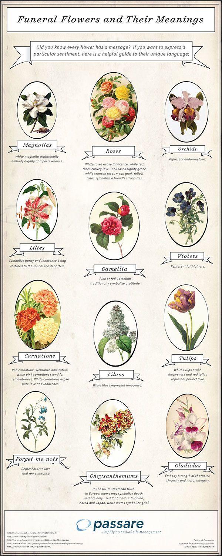 Funeralflowers their meanings gravestone death gravestone death funerals izmirmasajfo