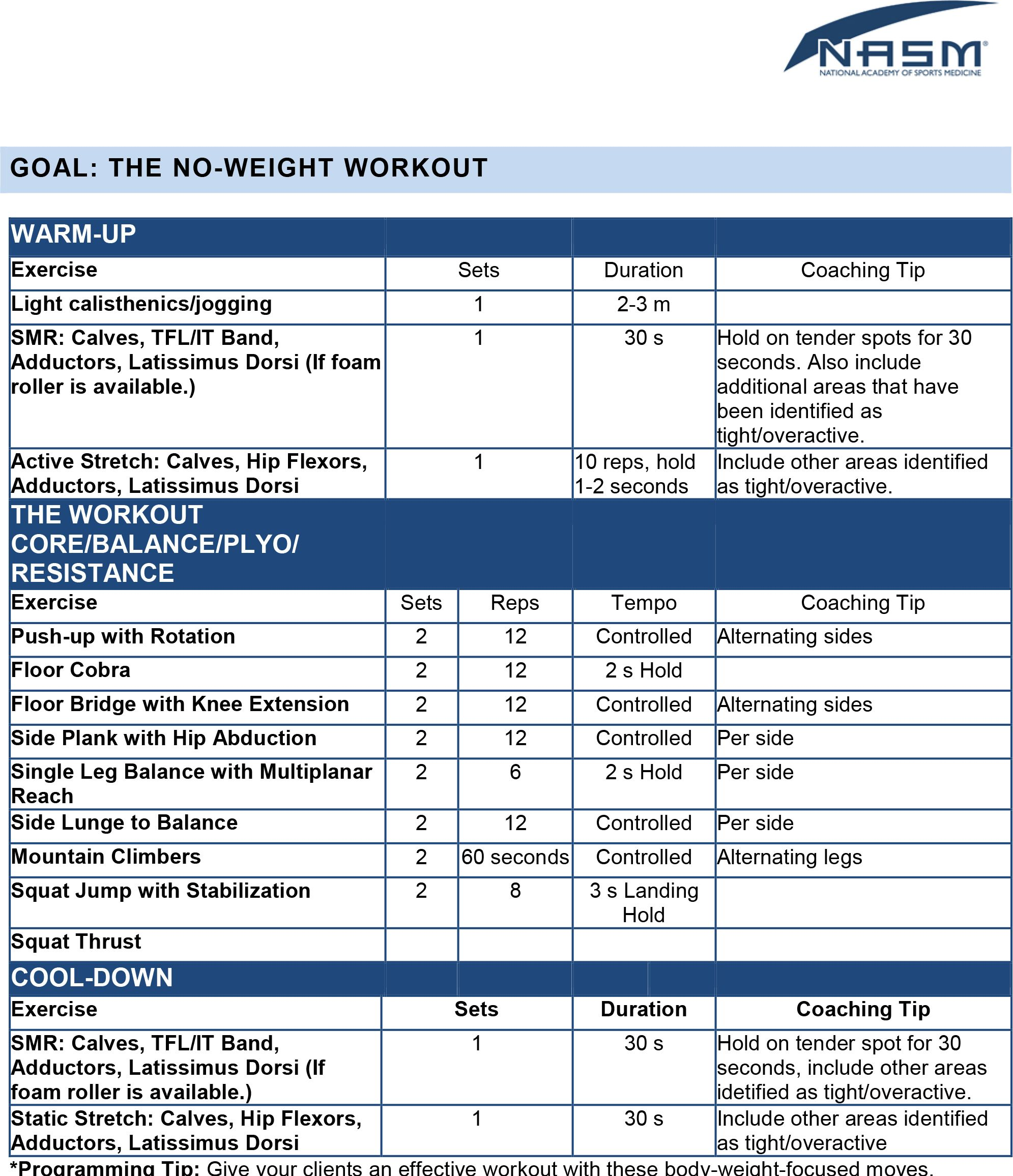 The NoWeight Workout  Training Programs    Workout