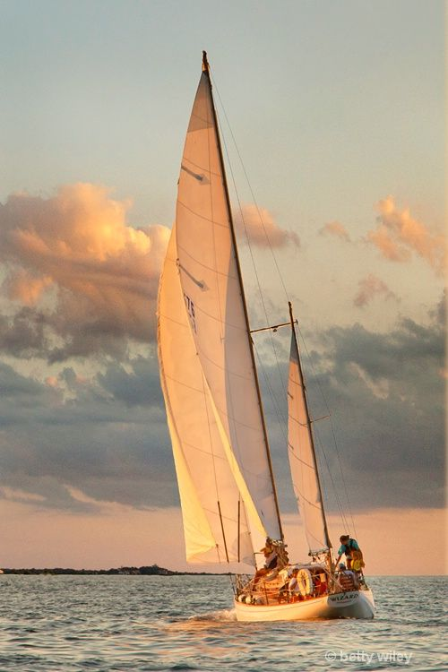 Wiley Economy Sail Charter: Sailing Cape Cod © Betty Wiley
