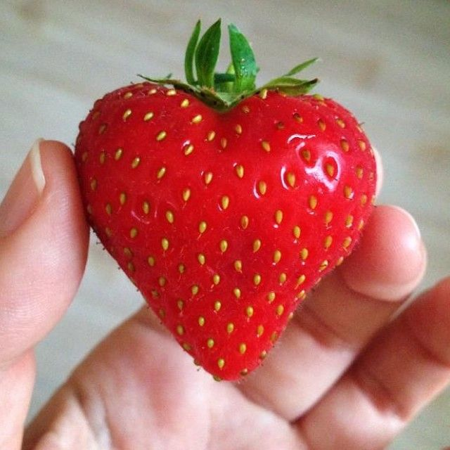 Jessie got in touch to show us the heart shaped strawberry she found recently. Thought you guys would love it.