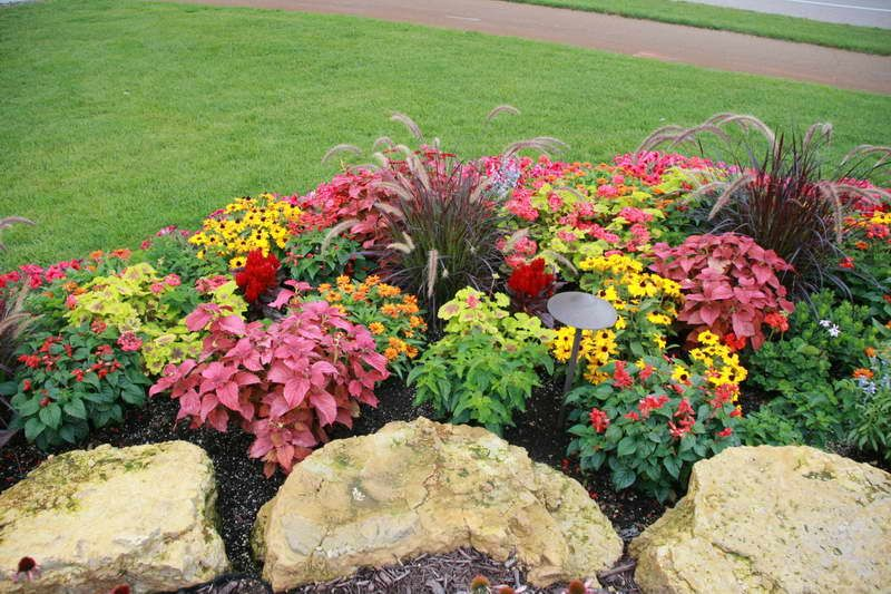 Annual flower bed designs annual flower bed designs with for Flower bed landscaping ideas