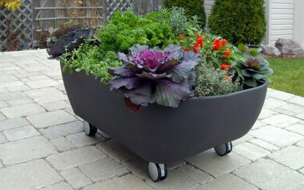 Mobile Bathtub Like Planter To Organize A Mobile Garden Amazing Ideas