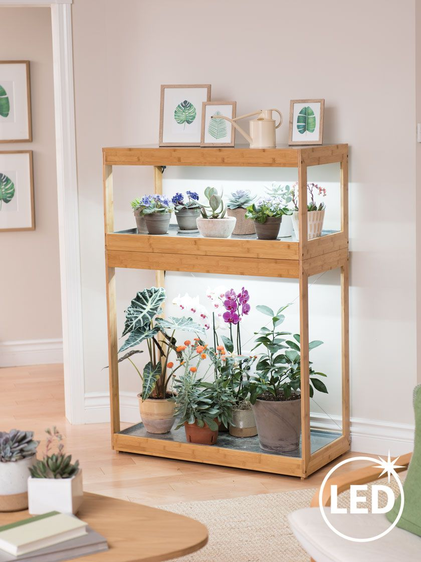 3 Tier Bamboo Stand With Led Grow Lights For Succulents And Seeds