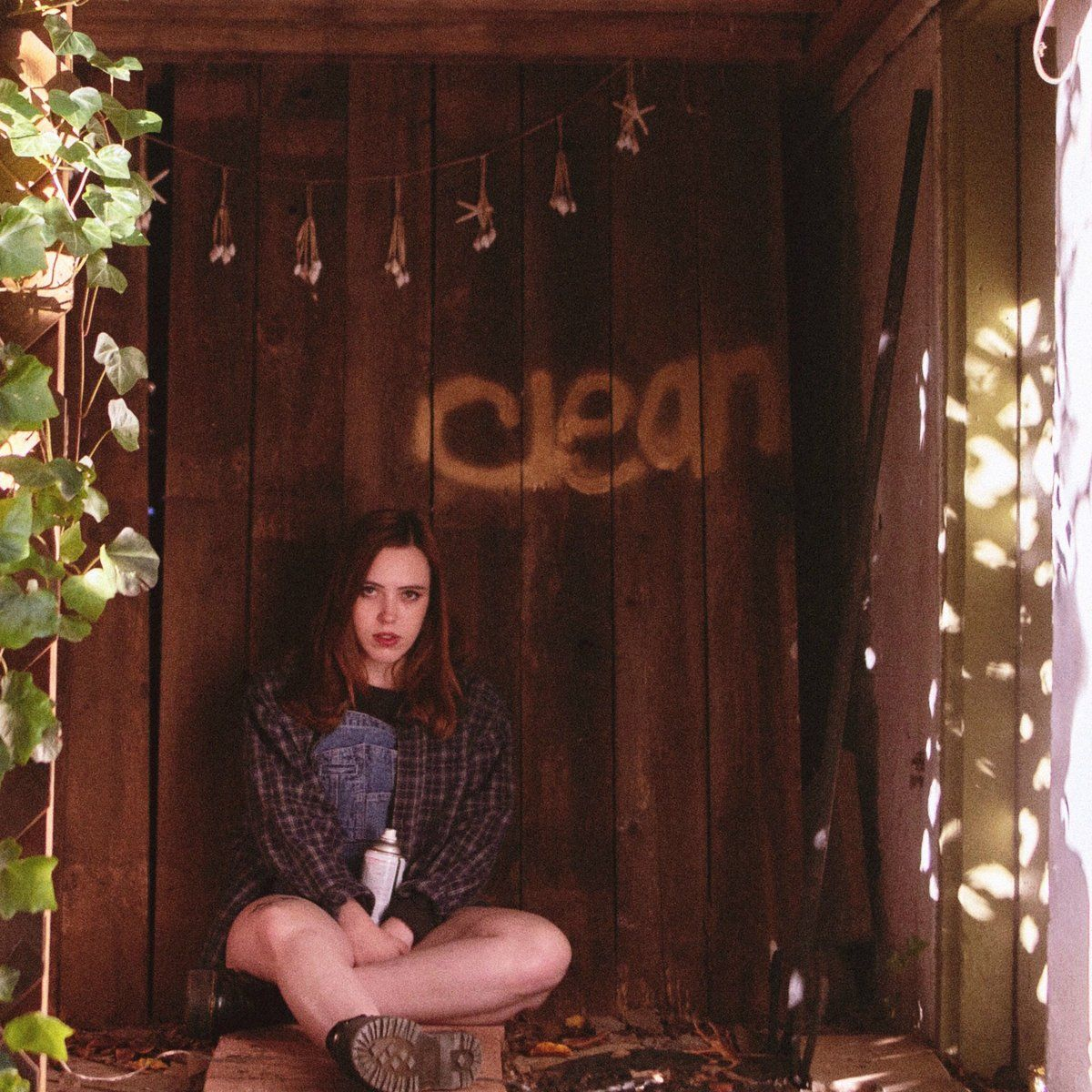 Soccer Mommy Clean Lp Music Blog Indie Rock Indie Pop