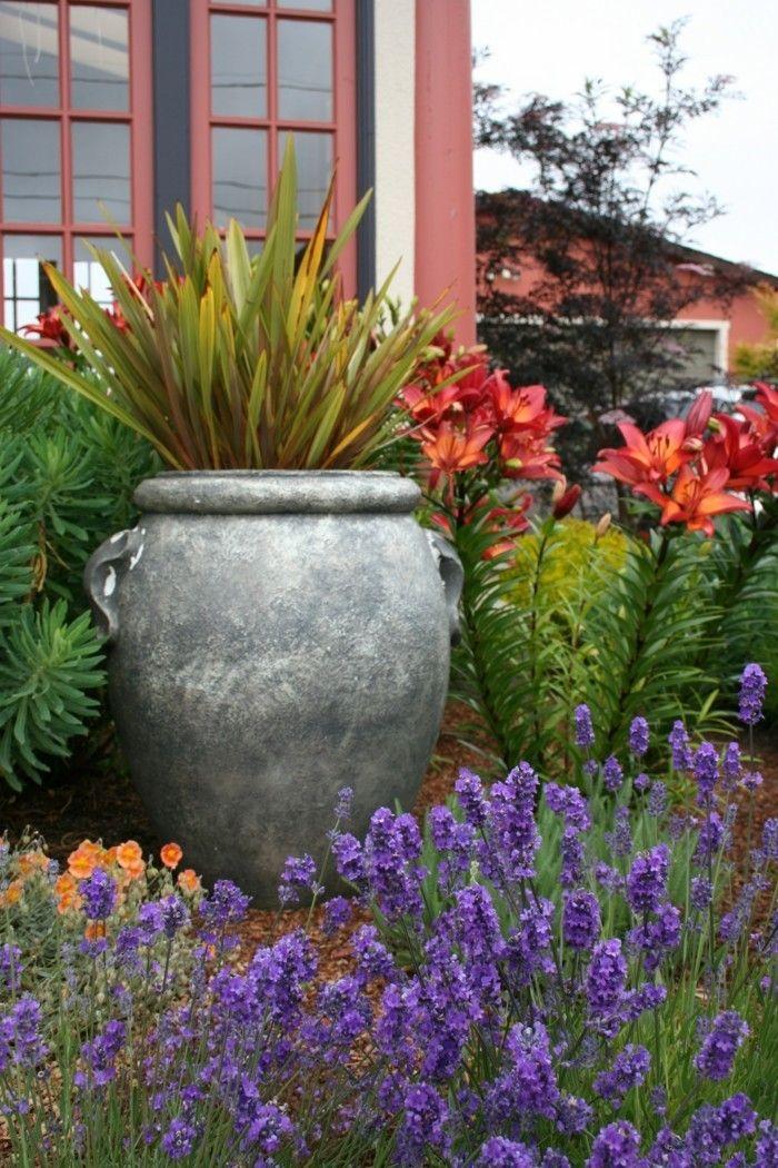 Mediterraner Garten Blühende Pflanzen Und Pflanzentöpfe
