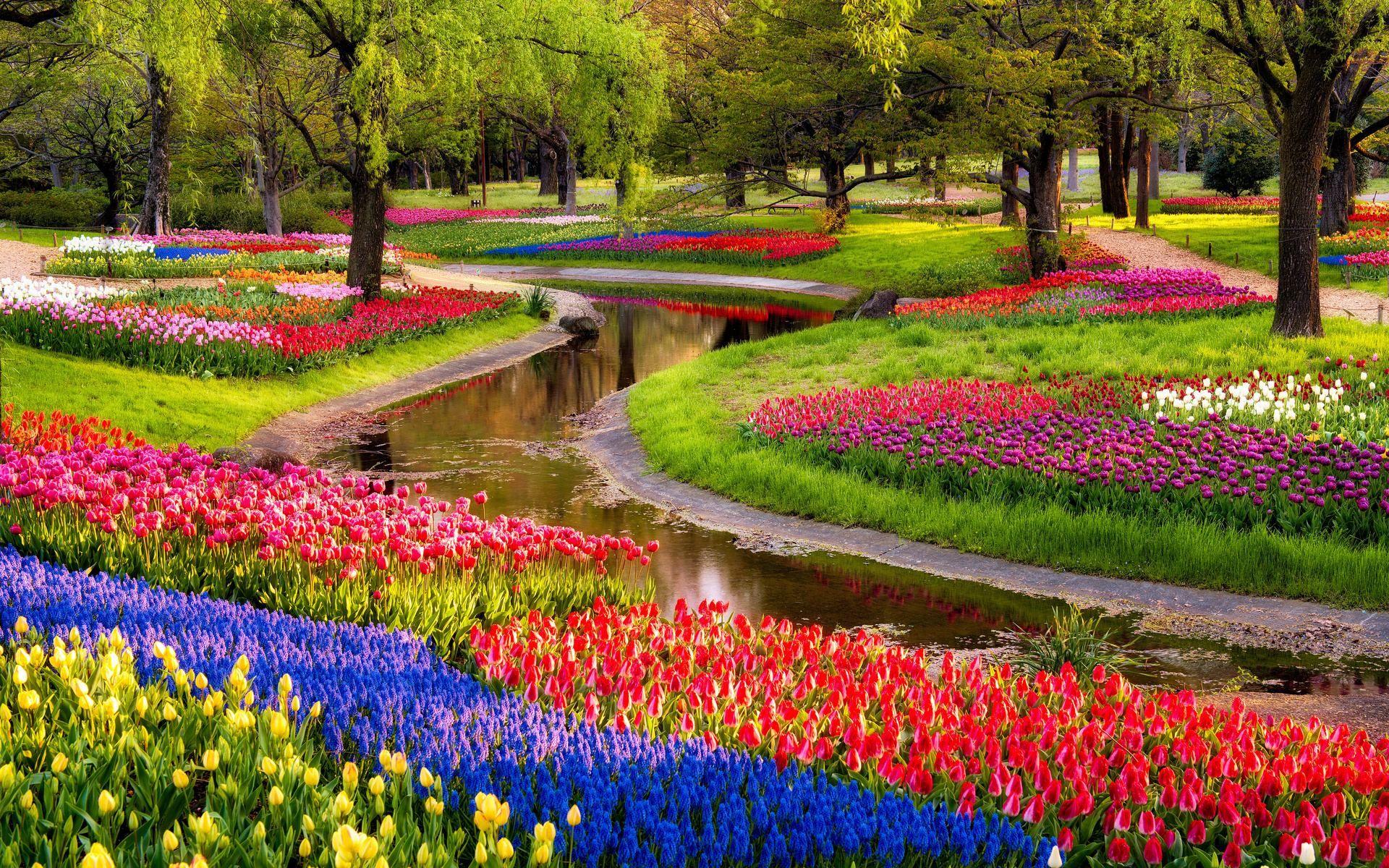 Beautiful Flowers Garden 92177 Beautiful Colorful Pictures Jardins Bonitos Jardins Famosos Fotos De Jardim