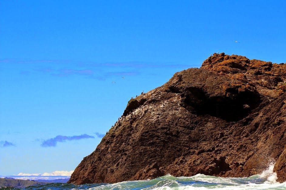 Monumento Natural Islotes de Punihuil - Region de los Lagos, Chile, América do Sul - South America