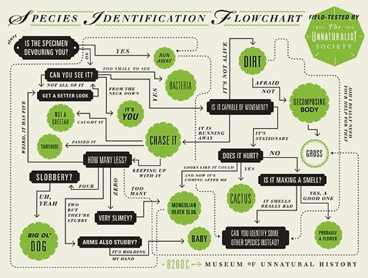 17 Best images about Flow Chart on Pinterest   To be, Couple ...