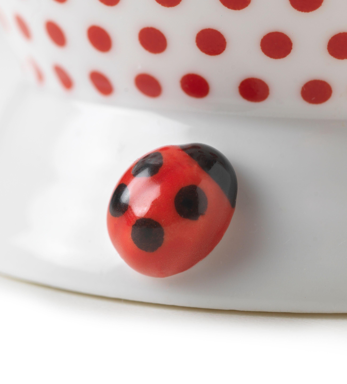 Ladybird beakers 3d ladybird httpringtonshomeware c11 ladybird beakers 3d ladybird httpringtons negle Gallery