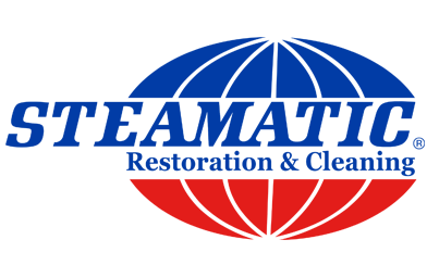 Stanley Steemer Louisiana 9142 Castille Rd 225 317 9937 Water Damage Baton Rouge Waterdamagebatonrouge Cleaning Company Logo Cleaning Restoration