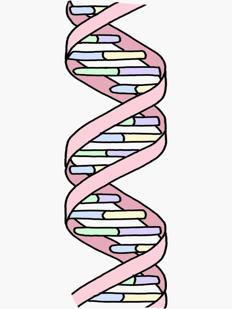Pastel Dna Strand Sticker By Andilynnf Dna Art Science Stickers Dna Drawing