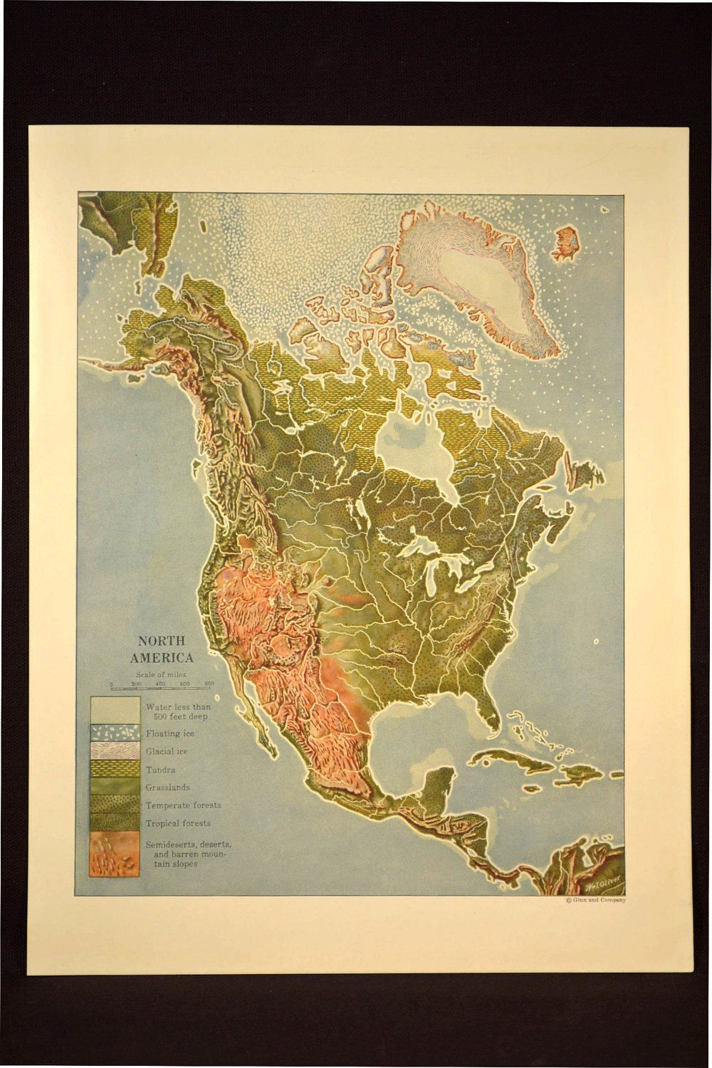 Map North America Map Physical Terrain Map Colorful Colored Map