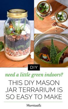 Need A Little Green Indoors This Diy Mason Jar Terrarium Is So Easy
