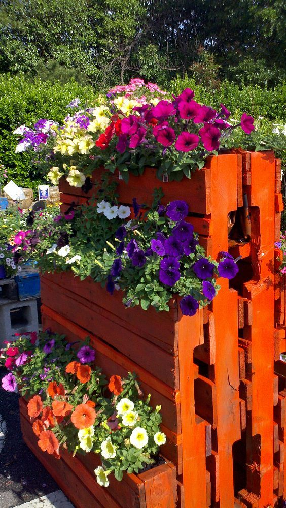 Make a upright garden to show off plants, Paint and cut some pallets ,you have a unique display of your favorite plants!